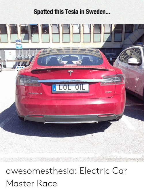 master race: Spotted this Tesla in Sweden... awesomesthesia:  Electric Car Master Race