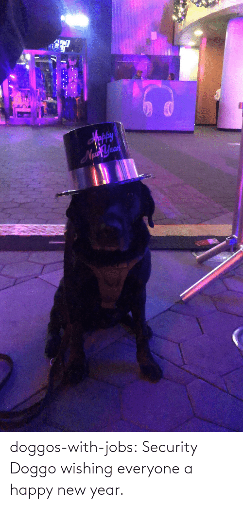 New Year's: Sppy  NaYean doggos-with-jobs:  Security Doggo wishing everyone a happy new year.