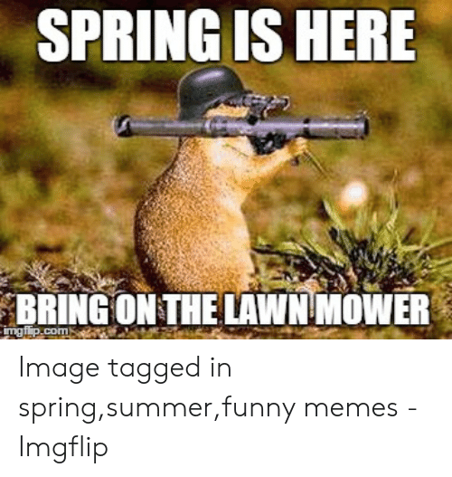 Funny Spring Memes: SPRING IS HERE  BRING ON THE LAWN MOWER Image tagged in spring,summer,funny memes - Imgflip