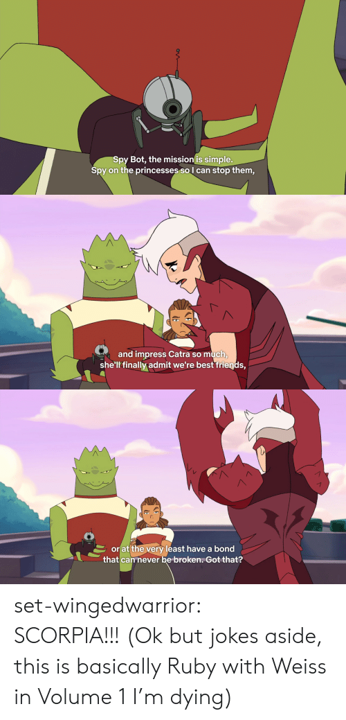 Friends, Tumblr, and Best: Spy Bot, the mission is simple.  on the princesses sol can stop them,  Spy   and impress Catra so much  she'll finally admit we're best friends,   orat the very least have a bond  that can never be broken, Got that? set-wingedwarrior:  SCORPIA!!! (Ok but jokes aside, this is basically Ruby with Weiss in Volume 1 I'm dying)