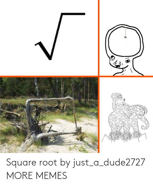 Square: Square root by just_a_dude2727 MORE MEMES