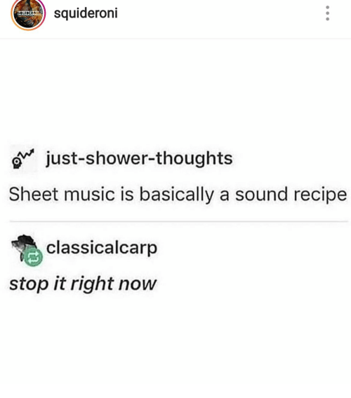 Shower thoughts: squideroni  SQUIDERONI  just-shower-thoughts  Sheet music is basically a sound recipe  classicalcarp  stop it right now