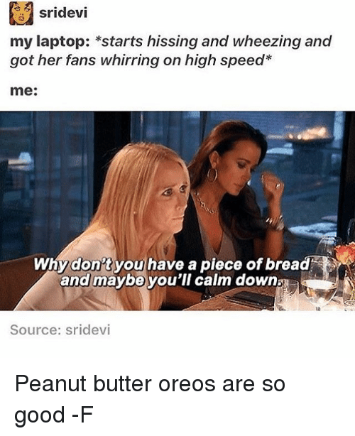 Laptop, Relatable, and Peanuts: sridevi  my laptop: *starts hissing and wheezing and  got her fans whirring on high speed  me:  Why don't you have a piece of bread  and maybe you'll calm down  Source: Sridevi Peanut butter oreos are so good -F