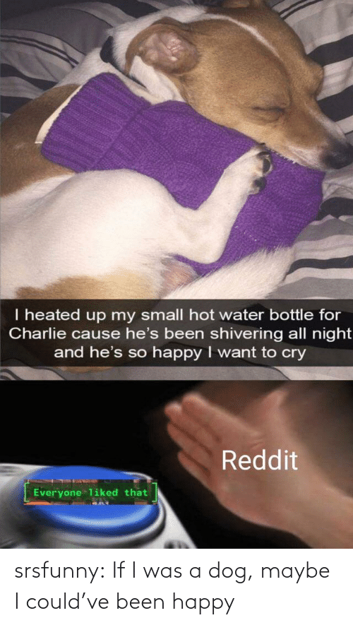 I Was A: srsfunny:  If I was a dog, maybe I could've been happy