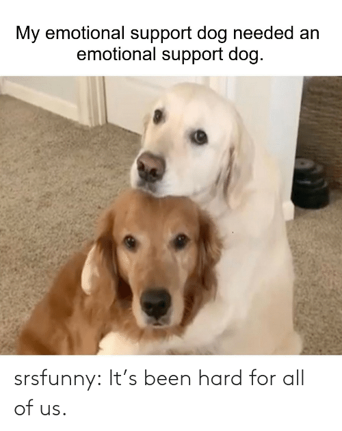 For All: srsfunny:  It's been hard for all of us.