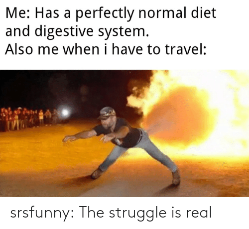 Struggle: srsfunny:  The struggle is real