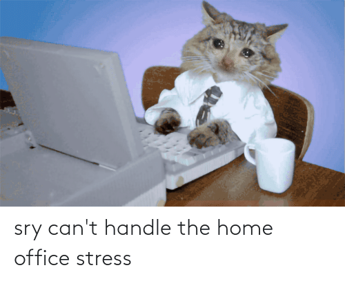 cant handle: sry can't handle the home office stress
