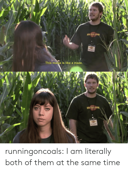 maize: STAFF  This maize is like a maze runningoncoals:  I am literally both of them at the same time