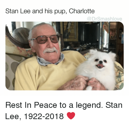 Memes, Stan, and Stan Lee: Stan Lee and his pup, Charlotte  @DrSmashlove Rest In Peace to a legend. Stan Lee, 1922-2018 ❤️
