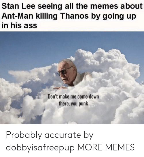 Me Come: Stan Lee seeing all the memes about  Ant-Man killing Thanos by going up  in his ass  Don't make me come down  there, you punk Probably accurate by dobbyisafreepup MORE MEMES