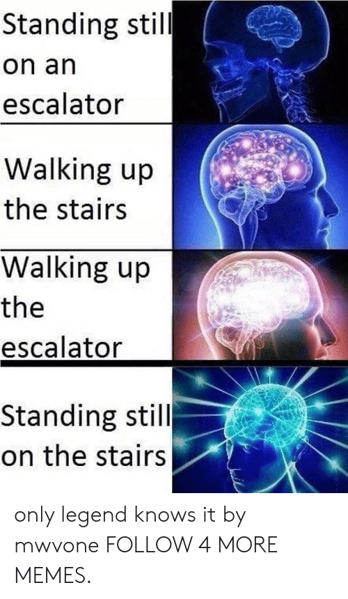 Escalator: Standing still  on an  escalator  Walking up  the stairs  Walking up  the  escalator  Standing still  on the stairs only legend knows it by mwvone FOLLOW 4 MORE MEMES.