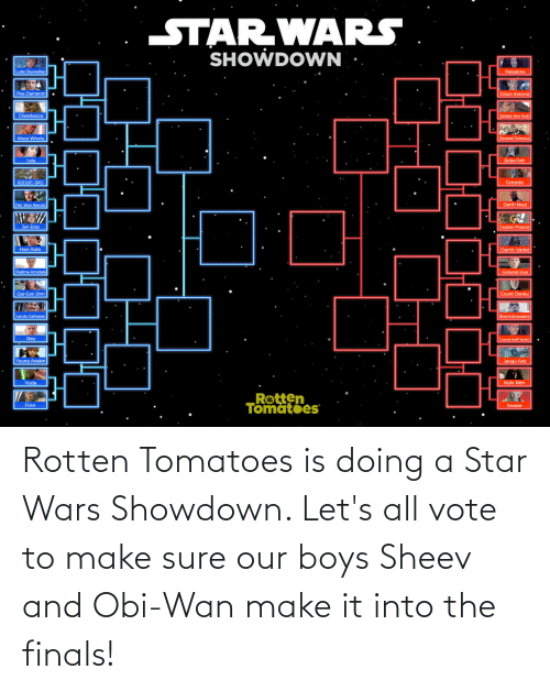 Chewbacca, Darth Vader, and Finals: STAR WARS  SHOWDOWN  Luke Skywalker  Palpatine  Poe Dameron  Orson Krennic  Jabba the Hutt  Chewbacca  General Grievous  Mace Windu  Leia  Boba Fett  R2D2/C-3PO  Greedo  Darth Maul  Obi Wan Kenobi  Jyn Erso  Captain Phasma  Darth Vader  Han Solo  Padme Amidala  General Hux  Count Dooku  Qui-Gon Jinn  Lando Calrissian  Stormtroopers  Rey  Grand Moff Tarkin  Young Anakin  Jango Fett  Kylo Ren  Rotten  Tomatoes  Finn  Snoke Rotten Tomatoes is doing a Star Wars Showdown. Let's all vote to make sure our boys Sheev and Obi-Wan make it into the finals!