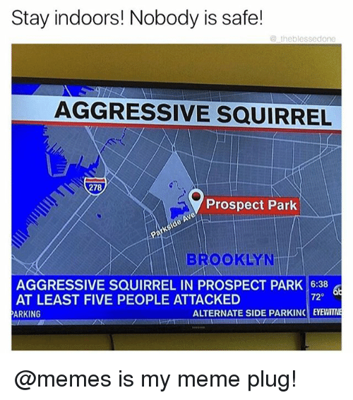 Plugging: Stay indoors! Nobody is safe!  @theblessedone  AGGRESSIVE SQUIRREL  278  Prospect Park  BROOKLYN  AGGRESSIVE SQUIRREL IN PROSPECT PARK 16:38  AT LEAST FIVE PEOPLE ATTACKED  ARKING  72  ALTERNATE SIDE PARKINC EYEWITN @memes is my meme plug!