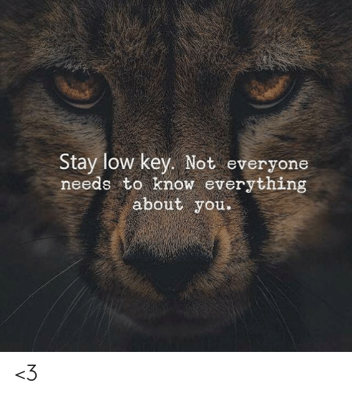 About You: Stay low key. Not everyone  needs to know everything  about you <3