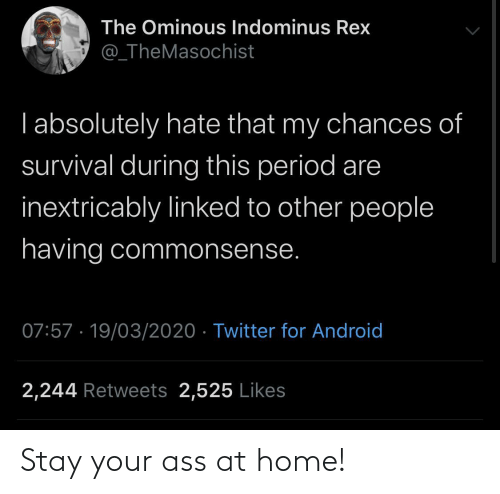 Home: Stay your ass at home!