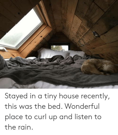 curl: Stayed in a tiny house recently, this was the bed. Wonderful place to curl up and listen to the rain.