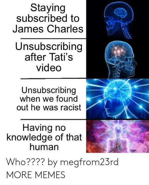 Dank, Memes, and Target: Staying  subscribed to  James Charles  Unsubscribing  after Tati's  video  Unsubscribing  when we found  out he was racist  Having no  knowledge of that  human Who???? by megfrom23rd MORE MEMES
