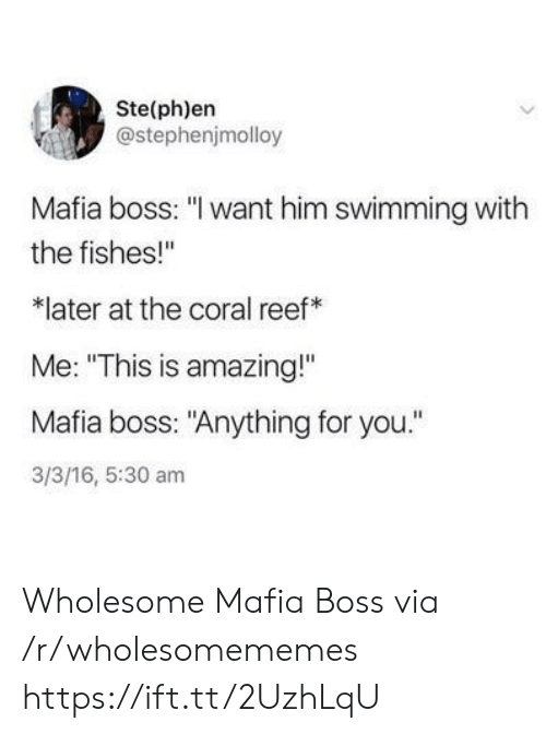 """Amazing, Wholesome, and 16.5: Ste(ph)en  @stephenjmolloy  Mafia boss: """"I want him swimming with  the fishes!""""  later at the coral reef  Me: """"This is amazing!""""  Mafia boss: """"Anything for you.""""  3/3/16, 5:30 am Wholesome Mafia Boss via /r/wholesomememes https://ift.tt/2UzhLqU"""