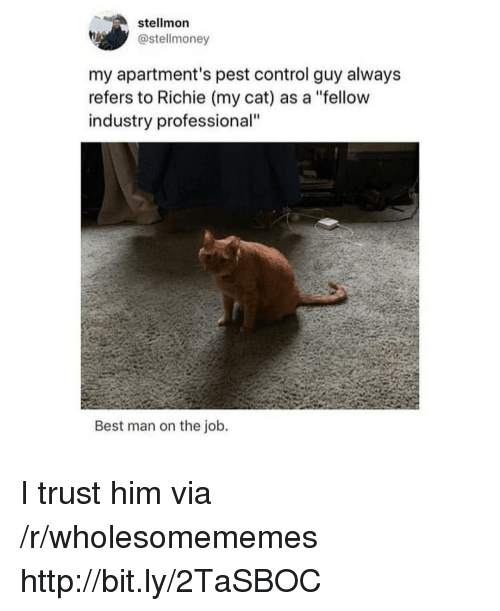 """pest: stellmon  @stellmoney  my apartment's pest control guy alway:s  refers to Richie (my cat) as a """"fellow  industry professional""""  Best man on the job. I trust him via /r/wholesomememes http://bit.ly/2TaSBOC"""