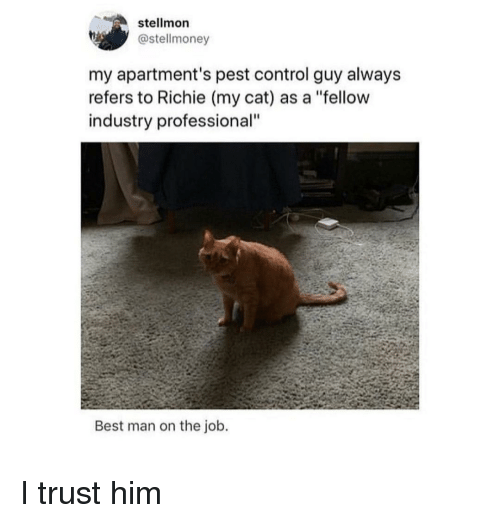"""pest: stellmon  @stellmoney  my apartment's pest control guy alway:s  refers to Richie (my cat) as a """"fellow  industry professional""""  Best man on the job. I trust him"""
