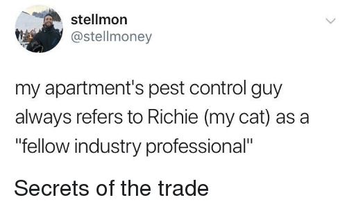 """pest: stellmon  @stellmoney  my apartment's pest control guy  always refers to Richie (my cat) as a  """"fellow industry professional"""" Secrets of the trade"""