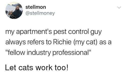 """pest: stellmon  @stellmoney  my apartment's pest control guy  always refers to Richie (my cat) as a  """"fellow industry professional"""" Let cats work too!"""