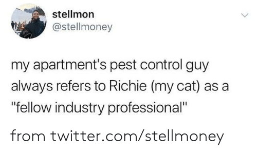 """pest: stellmon  @stellmoney  my apartment's pest control guy  always refers to Richie (my cat) as a  """"fellow industry professional"""" from twitter.com/stellmoney"""