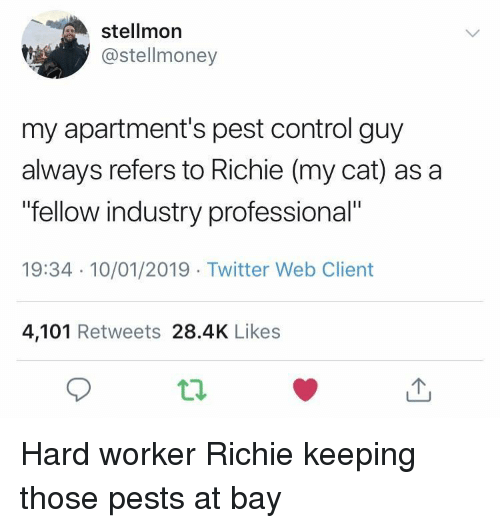"""pest: stellmor  @stellmoney  my apartment's pest control guy  always refers to Richie (my cat) as a  fellow industry professional""""  19:34 10/01/2019 Twitter Web Client  4,101 Retweets 28.4K Likes Hard worker Richie keeping those pests at bay"""