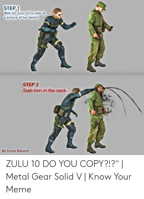 Family, Meme, and Zulu: STEP 1  Wait for Zulu-10 to look at  a picture of his family  STEP 2  Stab him in the neck.  By Corey Balsom ZULU 10 DO YOU COPY?!?"