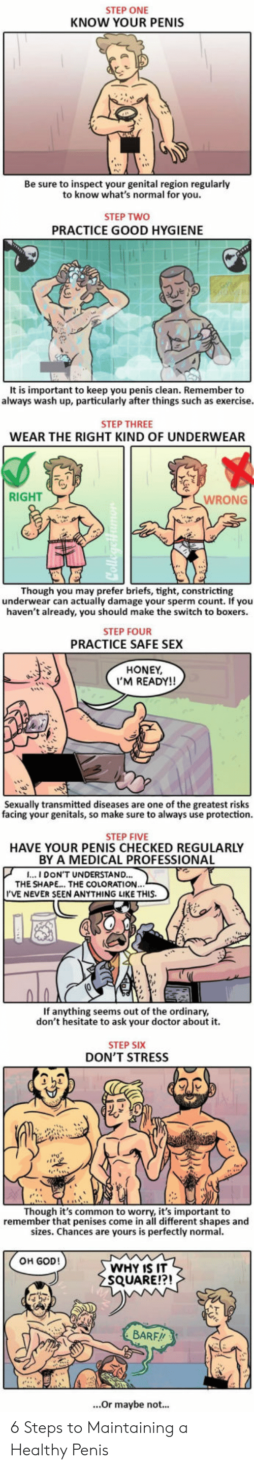 Doctor, God, and Sex: STEP ONE  KNOW YOUR PENIS  Be sure to inspect your genital region regularlyy  to know what's normal for you  STEP TWO  PRACTICE GOOD HYGIENE  It is important to keep you penis clean. Remember to  always wash up, particularly after things such as exercise  STEP THREE  WEAR THE RIGHT KIND OF UNDERWEAR  RIGHT  WRONG  Though you may prefer briefs, tight, constricting  underwear can actually damage your sperm count. If you  haven't already, you should make the switch to boxers.  STEP FOUR  PRACTICE SAFE SEX  HONEY  I'M READY!!  Sexually transmitted diseases are one of the greatest risks  facing your genitals, so make sure to always use protection.  genitals, S0  STEP FIVE  HAVE YOUR PENIS CHECKED REGULARLY  BY A MEDICAL PROFESSIONAL  CAL PROFED  I...I DON'T UNDERSTAND..  THE SHAPE.. THE COLORATION  I'VE NEVER SEEN ANYTHING LIKE THIS.  If anything seems out of the ordinary  don't hesitate to ask your doctor about it.  STEP SIX  DON'T STRESS  23  Though it's common to worry, it's important to  remember that penises come in all different shapes and  sizes. Chances are yours is perfectly normal  OH GOD!  WHY IS IT  SQUARE!?!  BARF!!  ...Or maybe not... 6 Steps to Maintaining a Healthy Penis