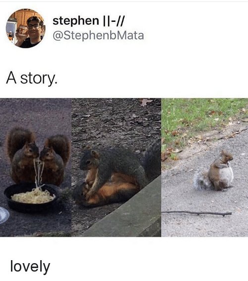 Memes, Stephen, and 🤖: stephen ll-//  @StephenbMata  A story lovely