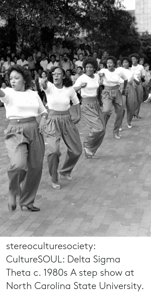 Tumblr, Blog, and Delta: stereoculturesociety:  CultureSOUL: Delta Sigma Theta c. 1980s A step show at North Carolina State University.
