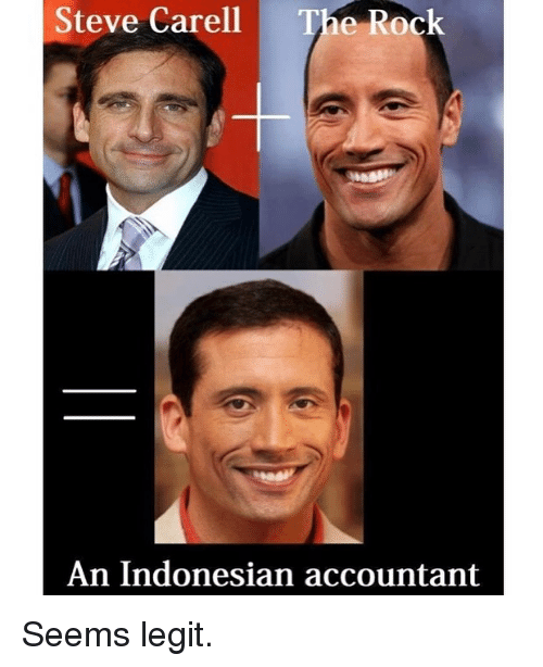 Accountant: Steve Carell  The Rock  An Indonesian accountant Seems legit.