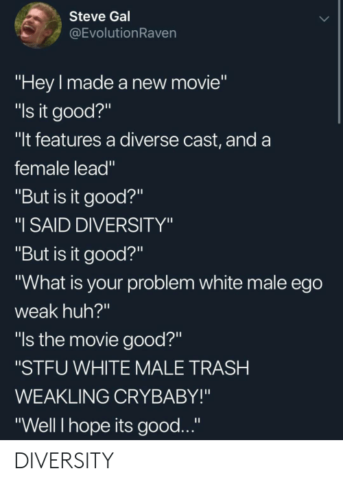 """Huh, Stfu, and Trash: Steve Gal  @EvolutionRaven  """"Hey made a new movie""""  """"ls it good?""""  """"It features a diverse cast, and a  female lead""""  """"But is it good?""""  """"I SAID DIVERSITY""""  """"But is it good?""""  """"What is your problem white male ego  weak huh?""""  """"ls the movie good?""""  """"STFU WHITE MALE TRASH  WEAKLING CRYBABY!""""  """"Well I hope its good..."""" DIVERSITY"""