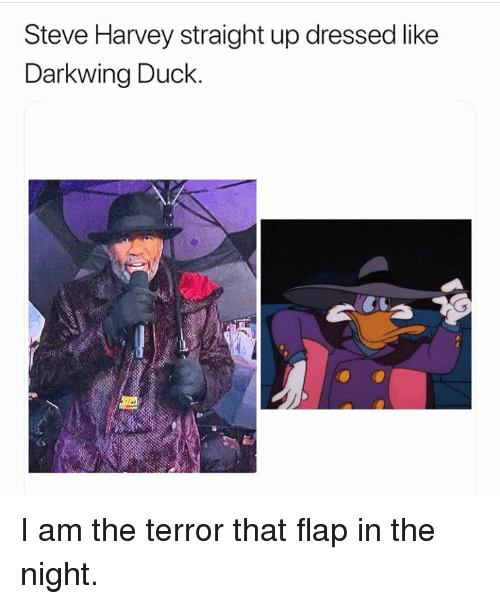 Steve Harvey, Duck, and Terror: Steve Harvey straight up dressed like  Darkwing Duck. I am the terror that flap in the night.