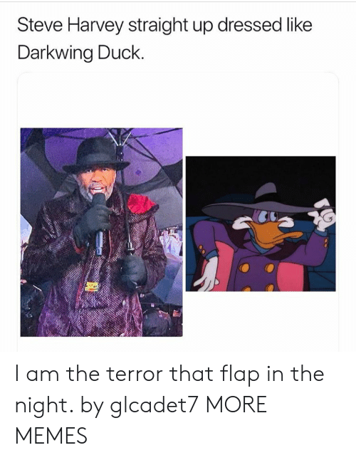 Steve Harvey: Steve Harvey straight up dressed like  Darkwing Duck. I am the terror that flap in the night. by glcadet7 MORE MEMES