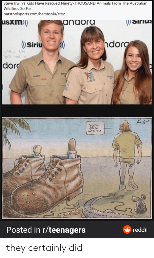 R Teenagers: Steve Irwin's Kids Have Rescued Ninety-THOUSAND Animals From The Australian  Wildfires So Far  barstoolsports.com/barstoolu/stev.  usxm)  anaora  ((Sirius  ndorg  ((Siriu  r/NEET_Life  ig@neeetlife  dor  AUST  ROBERT  ATIM  You'LL  GROW  INTO 'EM  BINDI  BOB  Posted in r/teenagers  e reddit they certainly did