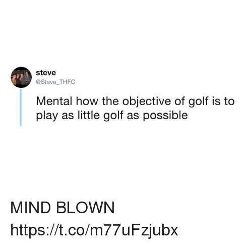 Funny, Golf, and Mind: steve  @Steve THFC  Mental how the objective of golf is to  play as little golf as possible MIND BLOWN https://t.co/m77uFzjubx