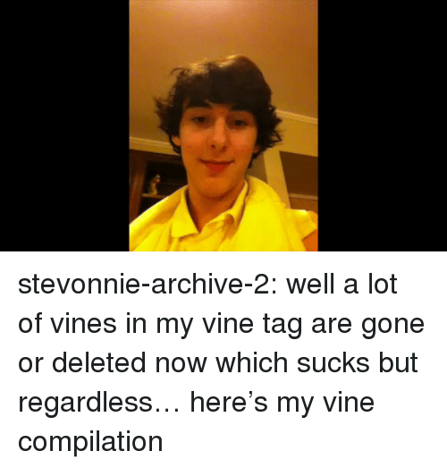 Vine Compilation: stevonnie-archive-2: well a lot of vines in my vine tag are gone or deleted now which sucks but regardless… here's my vine compilation