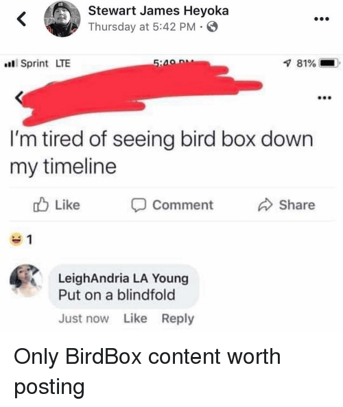 Stewart: Stewart James Heyoka  Thursday at 5:42 PM  Sprint LTE  81%  I'm tired of seeing bird box down  my timeline  Like  Comment Share  LeighAndria LA Young  Put on a blindfold  Just now Like Reply Only BirdBox content worth posting