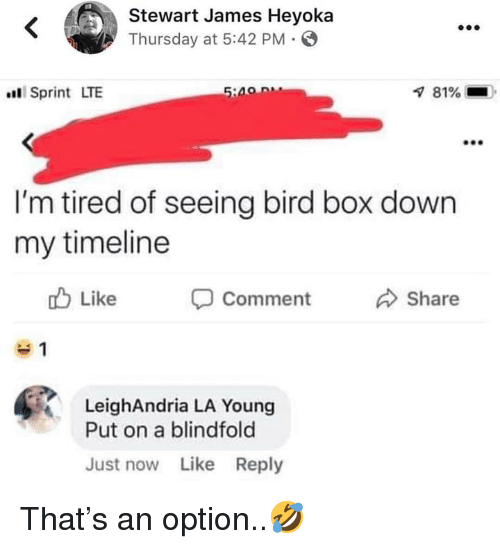 Stewart: Stewart James Heyoka  Thursday at 5:42 PM  Sprint LTE  81%-  I'm tired of seeing bird box down  my timeline  b Like  Comment  Share  LeighAndria LA Young  Put on a blindfold  Just now Like Reply That's an option..🤣