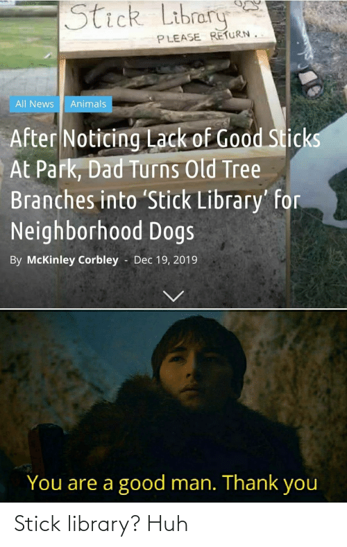 Library: Stick library? Huh