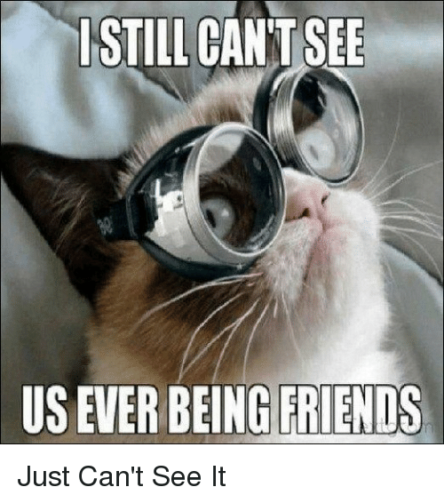 Cant See It: STILL CAN'T SEE  US EVER BEING FRIENDS Just Can't See It