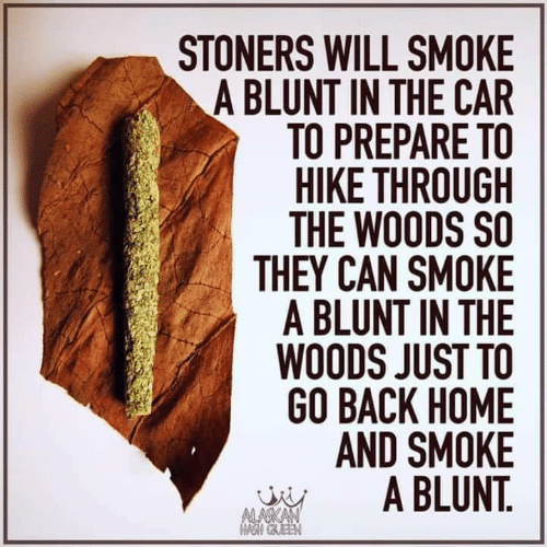Memes, Home, and Back: STONERS WILL SMOKE  A BLUNT IN THE CAR  TO PREPARE TO  HIKE THROUGH  THE WOODS SO  THEY CAN SMOKE  A BLUNT IN THE  WOODS JUST TO  GO BACK HOME  AND SMOKE  A BLUNT.  ALASKAN  OM GAEEN