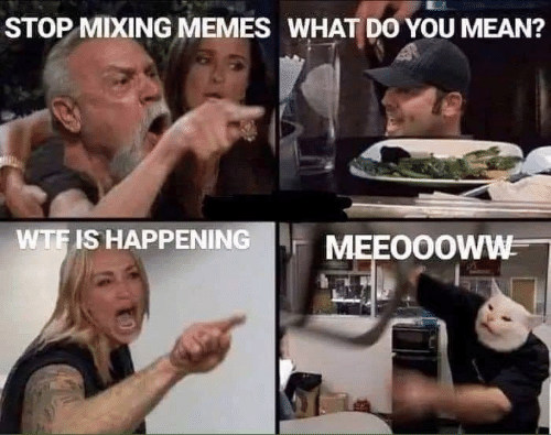 Memes What: STOP MIXING MEMES WHAT DO YOU MEAN?  WTF IS HAPPENING  MEEO0OWW