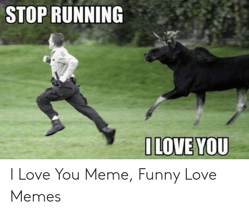 Funny, Love, and Meme: STOP RUNNING  ILOVE YOU I Love You Meme, Funny Love Memes