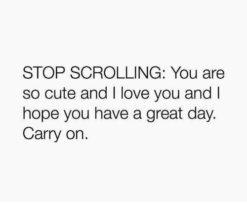 You Are So Cute: STOP SCROLLING: You are  so cute and I love you and I  hope you have a great day.  Carry on.