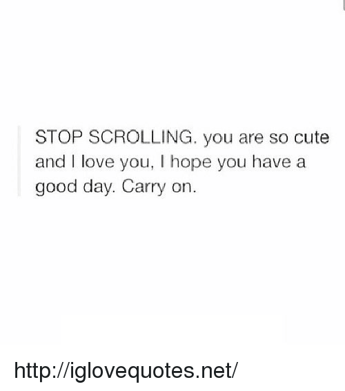 Cute, Love, and I Love You: STOP SCROLLING. you are so cute  and I love you, I hope you have a  good day. Carry on. http://iglovequotes.net/