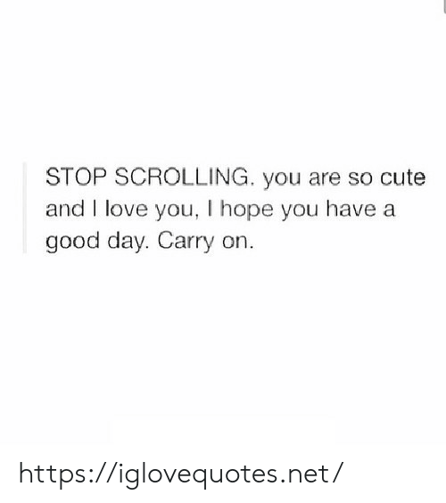 And I Love You: STOP SCROLLING. you are so cute  and I love you, I hope you have a  good day. Carry on. https://iglovequotes.net/