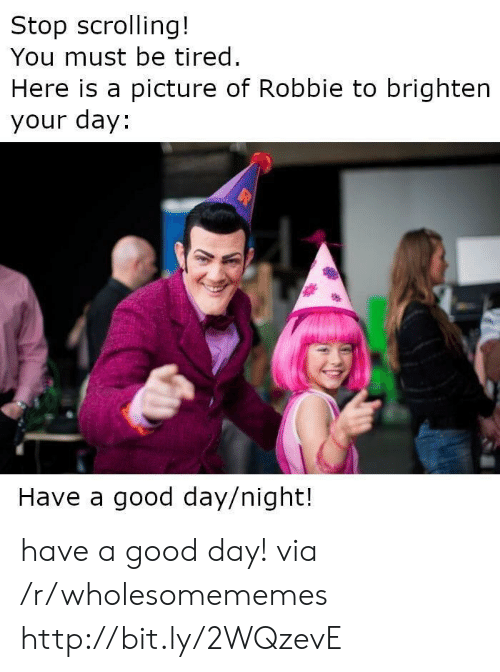 Good, Http, and A Picture: Stop scrolling!  You must be tired.  Here is a picture of Robbie to brighten  your day:  Have a good day/night! have a good day! via /r/wholesomememes http://bit.ly/2WQzevE